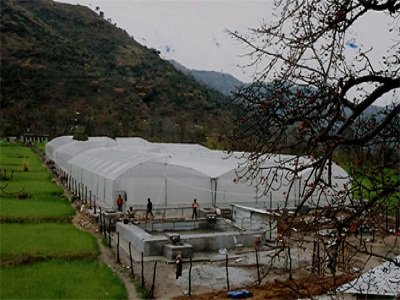 Protected Cultivation Sunni, Dev Block Basantpur, Himachal Pradesh